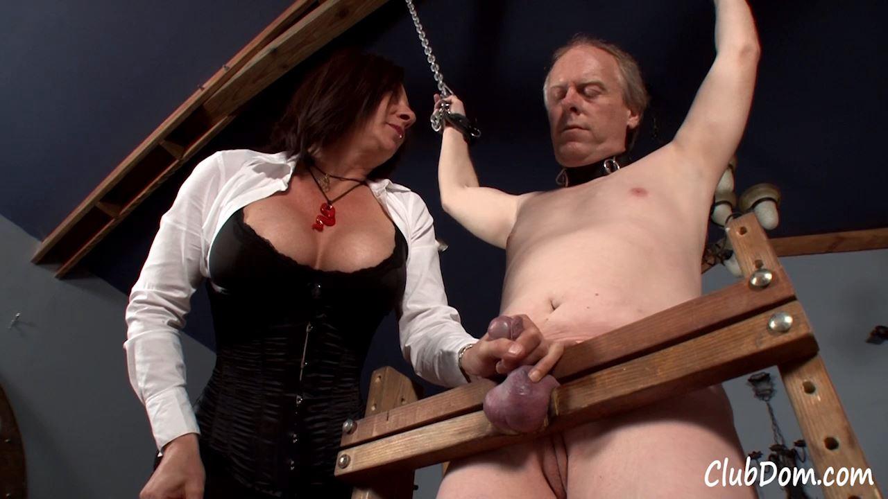 Venus Divine In Scene: Beating Useless Meat - CLUBDOM / RUTHLESSVIXEN - HD/720p/MP4