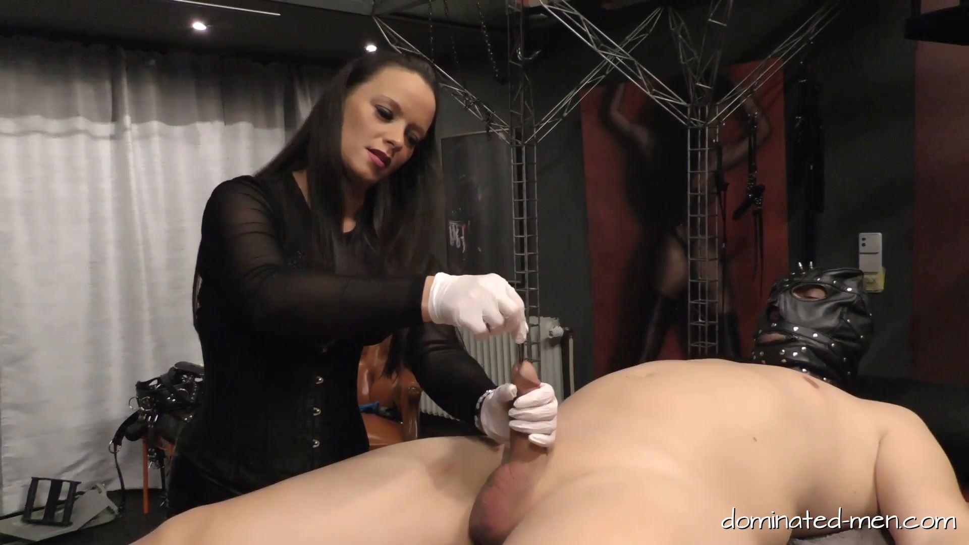 Comtesse la Moet In Scene: My Fun your Pain Part 1 - DOMINATED-MEN - FULL HD/1080p/MP4
