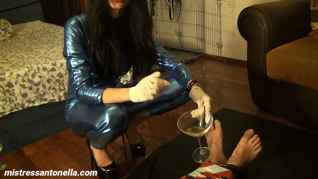 Mistress Antonella In Scene: Mummification, penis pump, Champagne & Caviar - SILICONE GODDESS ANTONELLA - HD/750p/MP4