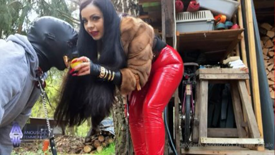 Training My Dog! He Needs Some Lessons To Learn - ANOUSCHKA FEMME FATALE - LQ/240p/MP4